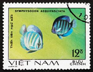 Timbres sur les poissons Discus Timbres sur les poissons
